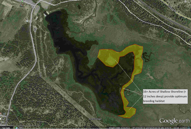 Van Norden Western Toad habitat map
