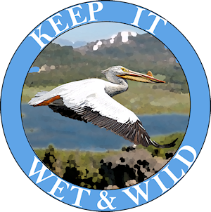 Keep it wet and wild logo-blue-small
