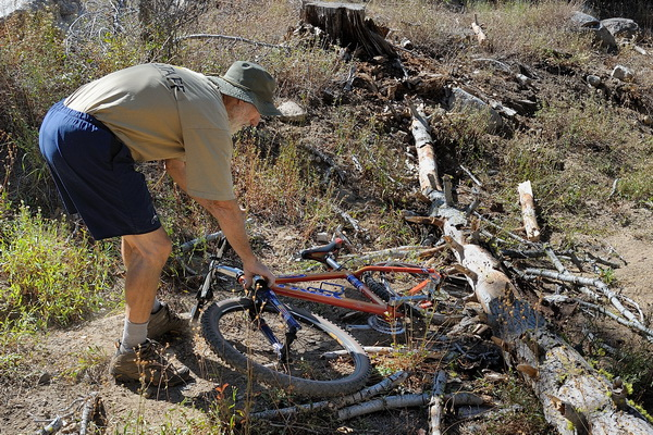 GL freeing LCs bike from tree on Killys Cruise trail in Royal Gorge area-10 9-6-13
