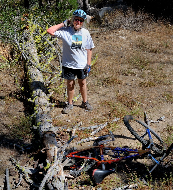 LC after tree fell on her bike on Killys Cruise in Royal Gorge area-14 9-6-13