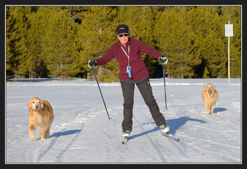LC Maggie Calla skiing in Van Norden Meadow-05 2-20-14